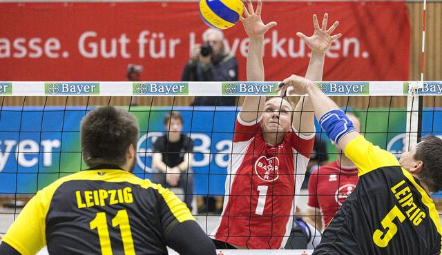 DM Sitzvolleyball: Bayer Sitzvolleyballer wollen den 24. nationalen Titel  - Foto: Mika Volkmann