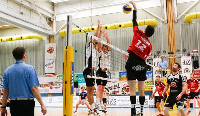 Eltmanner Oshino Volleys vor schwerem Auswärtstrip - Foto: VC Eltmann / Oshino Volleys Eltmann