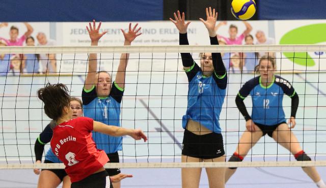 Volleyball-Team Hamburg empfängt Kiel im Nordderby - volleyballer.de