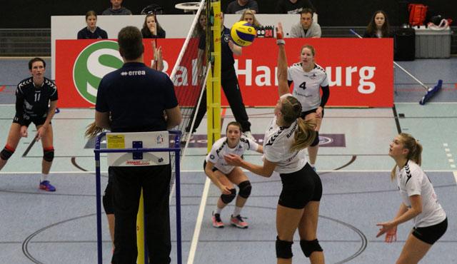 Volleyball-Team Hamburg empfängt den Meister - Foto: VTH/Lehmann