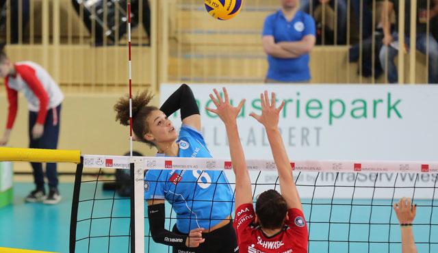 VC Wiesbaden steht vor Top-Spiel gegen Meister Schwerin - Foto: Detlef Gottwald