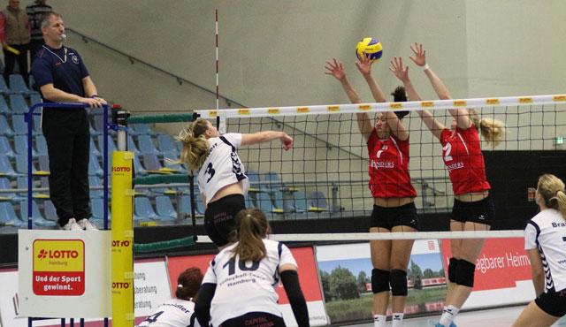 Volleyball-Team Hamburg empfängt die zweite Mannschaft des Köpenicker SC - Foto: VTH/Lehmann