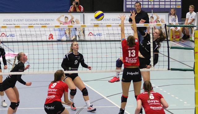 Volleyball-Team Hamburg verliert gegen den Vizemeister - Foto: VTH Lehmann