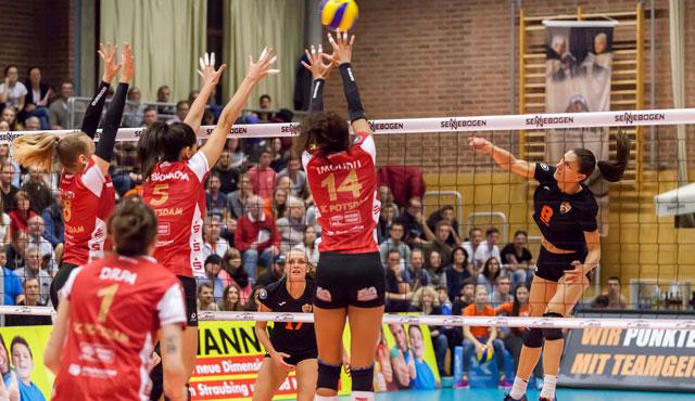 NawaRo beantragt Lizenz für die 1. Volleyball Bundesliga - Foto: Schindler