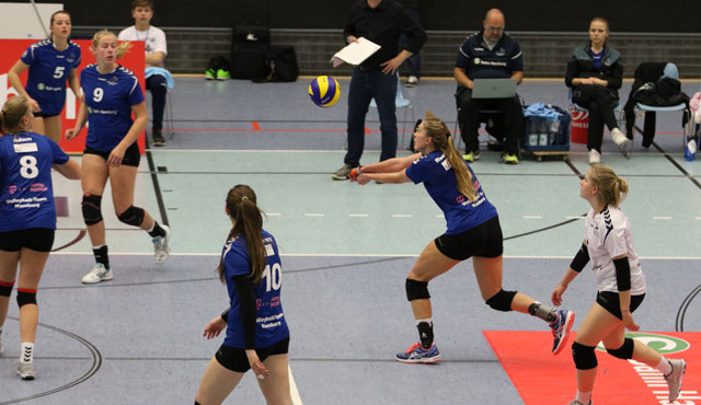 Volleyball-Team Hamburg will sich oben festbeißen - Foto: VTH/Lehmann