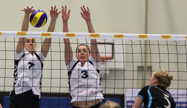 Volleyball-Team Hamburg zu Gast bei Blau-Weiß Dingden - Foto: VTH