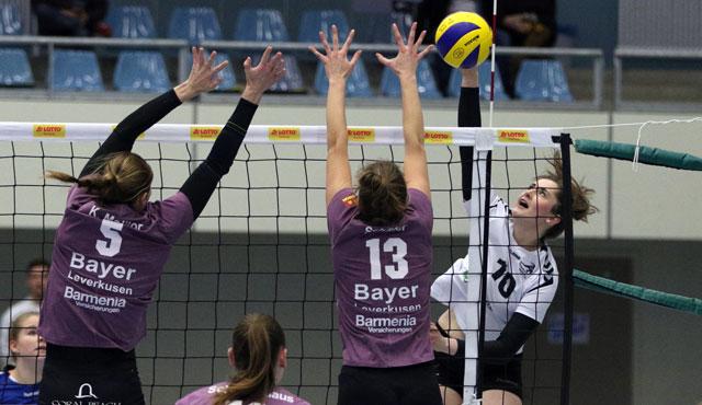 Volleyball-Team Hamburg mit Leidenschaft zum Sieg - Foto: VTH/Lehmann