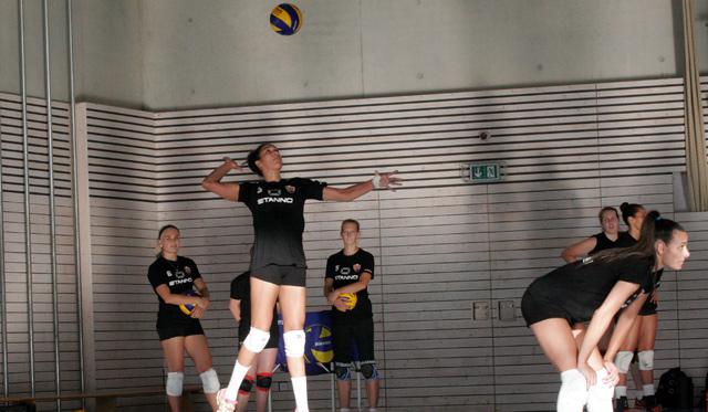 Duell NawaRo vs. Rote Raben in Wörth verspricht echter Volleyball-Leckerbissen zu werden - Foto: Kettenbohrer