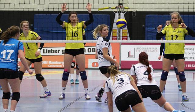 Das Volleyball-Team Hamburg gewinnt gegen VCO Schwerin - Foto: VTH/Lehmann