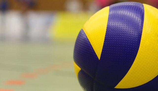 Die Volleyball-Bundesliga 2016/17 der Männer im Überblick - Foto: Pixabay.com