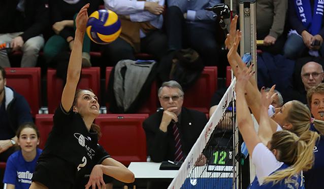 VC Wiesbaden testet beim Pokalsieger - Foto: Detlef Gottwald