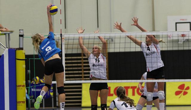 Volleyball-Team Hamburg absolviert die ersten Testspiele - Foto: Stephan Lehmann
