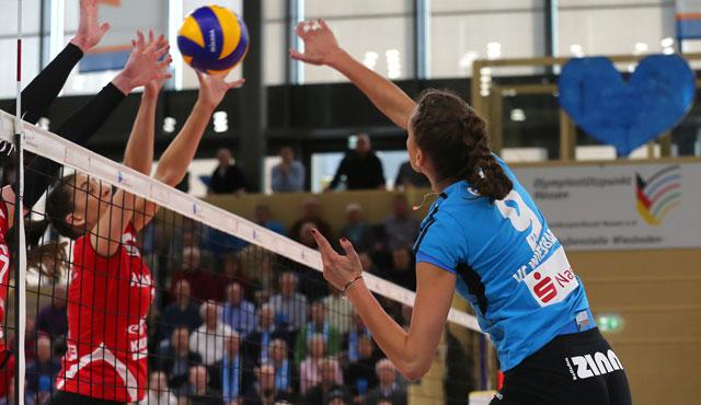 VC Wiesbaden reist zu Testspielen gegen Stuttgart und Pfeffingen - Foto: Detlef Gottwald
