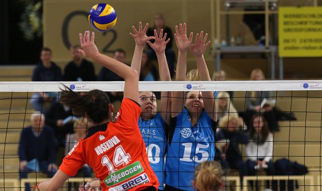 VCW zieht ins Viertelfinale des DVV-Pokals ein - nächster Gegner: Dresden - Foto: Detlef Gottwald