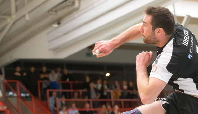 Knochen-Wochen für Eltmann  - Foto: VC Eltmann / Oshino Volleys Eltmann