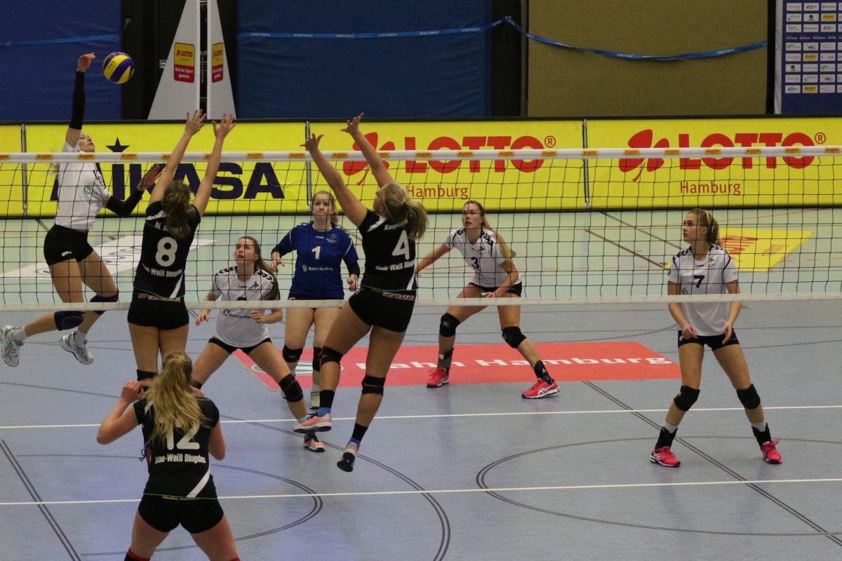 Ein Sieg ist Pflicht für das Volleyball-Team Hamburg  - Foto: VTH/Lehmann