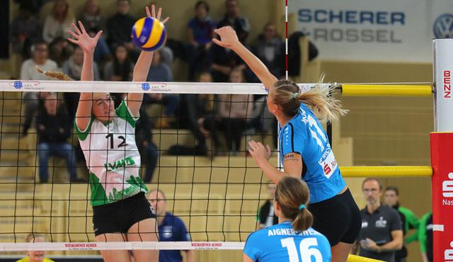 """""""Kein Spitzenspiel"""": VCW reist zum DVV-Pokalfinalisten Allianz MTV Stuttgart  - Foto: Detlef Gottwald"""