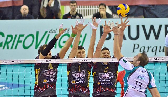 Das sind die bekanntesten Volleyballvereine - Foto: Pixabay.com