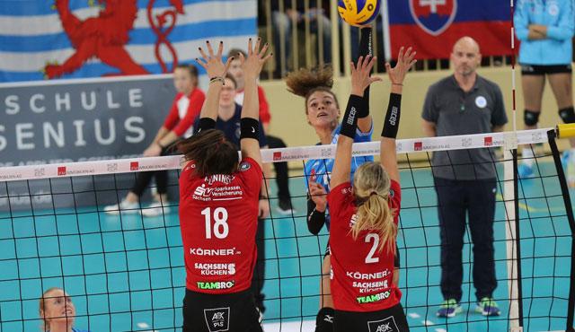 Dresdner SC und VC Wiesbaden buchen Ticket für Mannheim - Foto: Detlef Gottwald