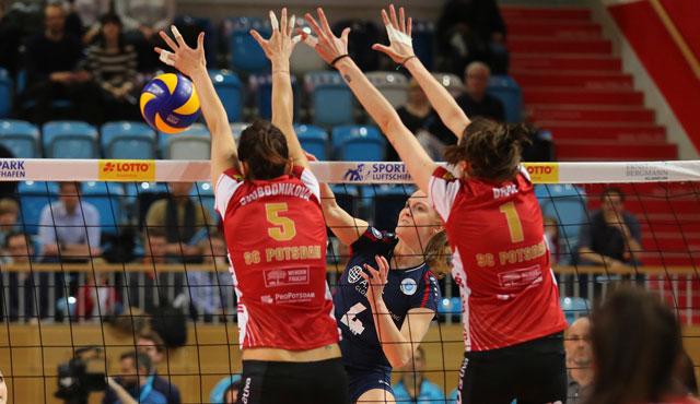 VCW verliert Playoff-Krimi Teil 1: 2:3-Niederlage in Potsdam - Foto: Detlef Gottwald