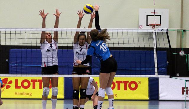 Volleyball-Team Hamburg verliert letztes Testspiel - Foto: VTH/Lehmann