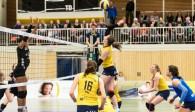 Spielte neben dem MVP Viola Torliene ebenfalls eine starke Partie auf der Mittelblockposition: Vera Schmidt-Narischkin Foto: Martin Miseré
